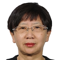 Dr. Wei Sun, Director of International Marketing, Twenty First Century Aerospace Technology (21AT), China