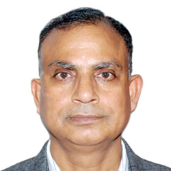 Awadhesh Kumar Mishra, Deputy Director General - Field Operations Division (FOD), National Sample Survey Office (NSSO), Ministry of Statistics and Program Implementation, Government of India